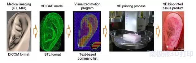 了解生物3D打印,从这篇文章开始